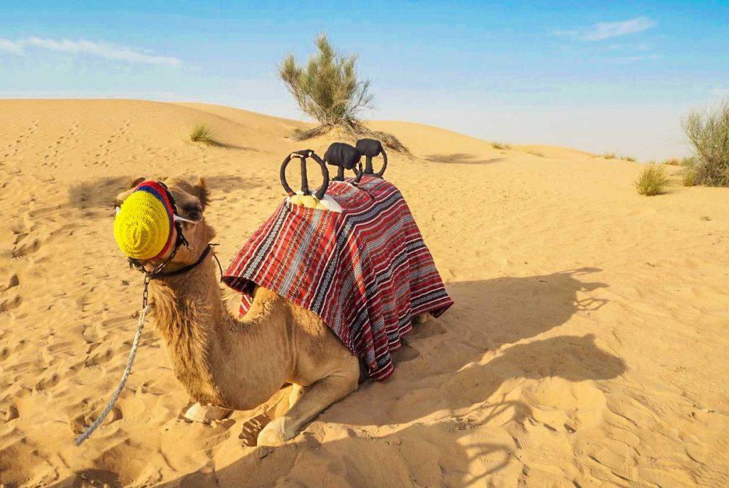 Дубай. 4 идеи активного отдыха