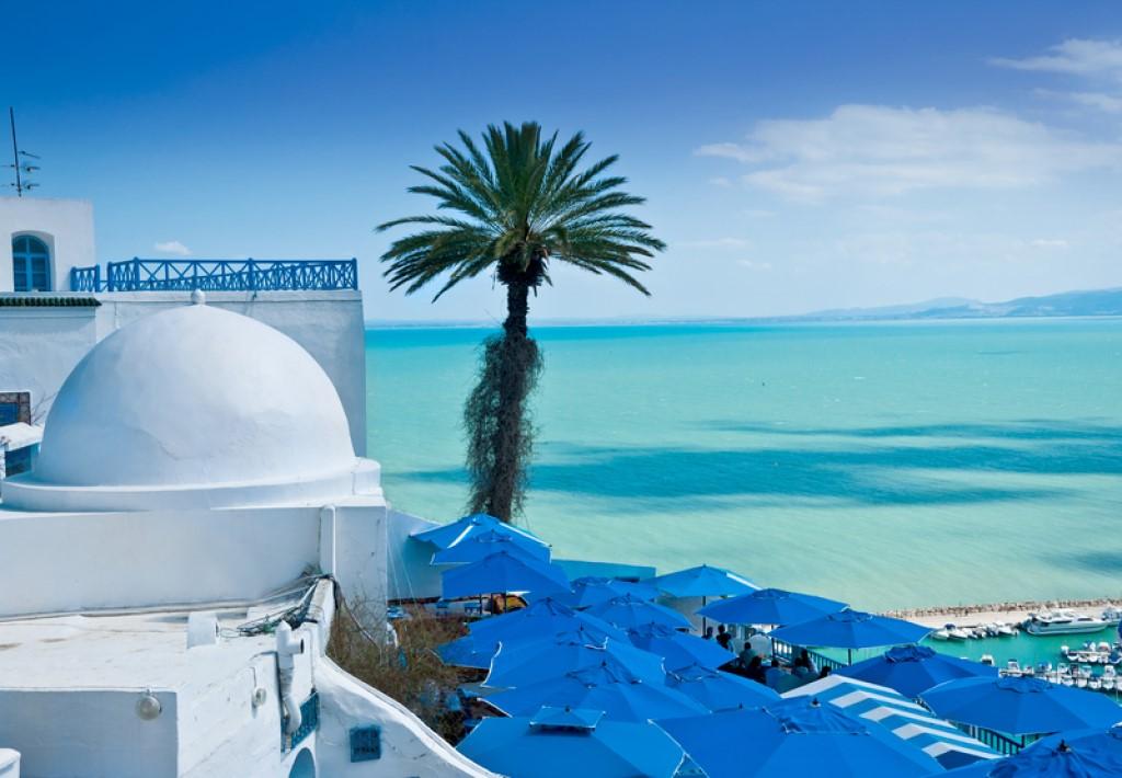 Чем богато Африканское Средиземноморье