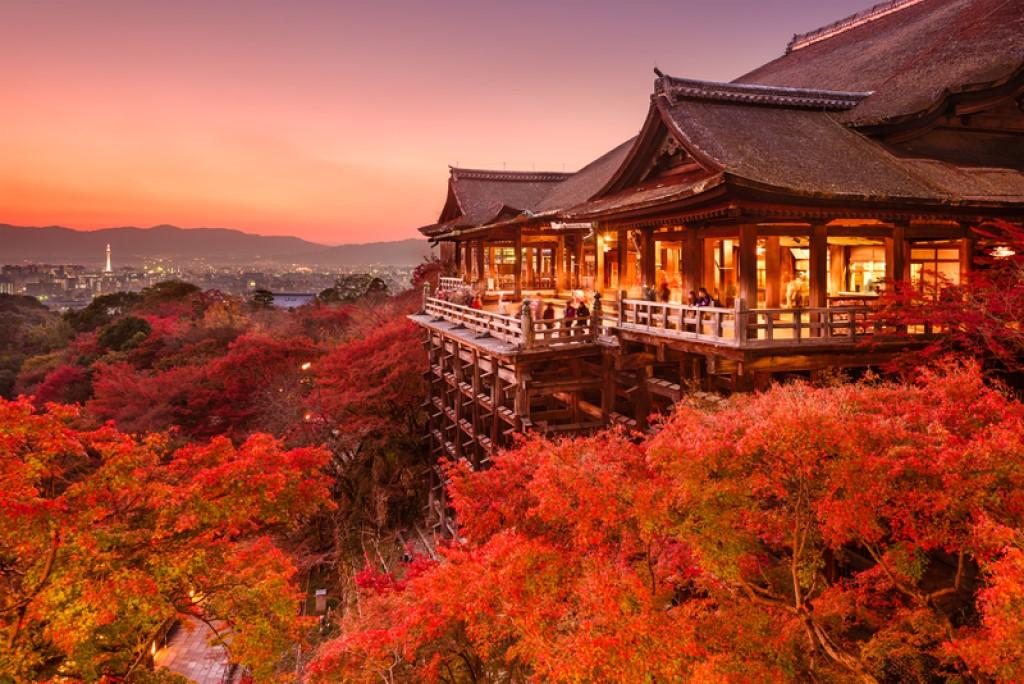 Япония. Сезон охоты_foto