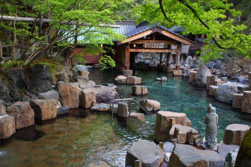 Теплый прием в Японии